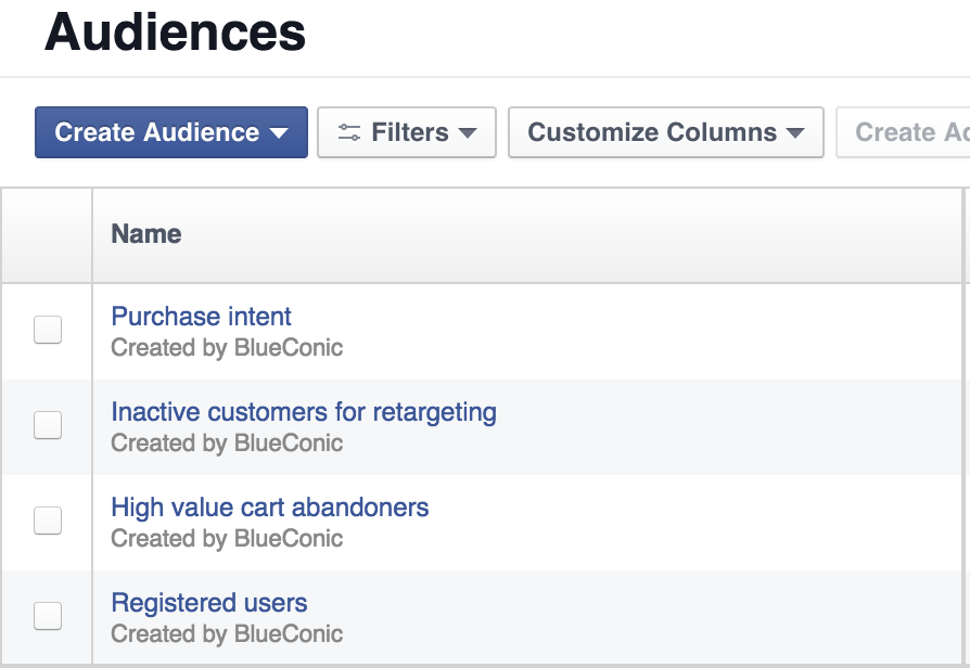 FB custom audiences1